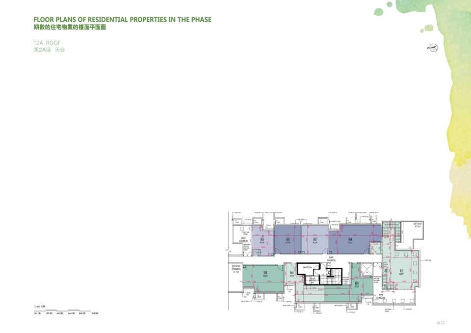 平面圖_T2A_roof