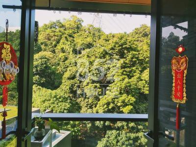 """[沙田] [獨家筍盤]上車首選; 雙鐡交匯, 香港正中心; 靜中帶旺, 高質綠化, """"開放式""""生活空間 !"""